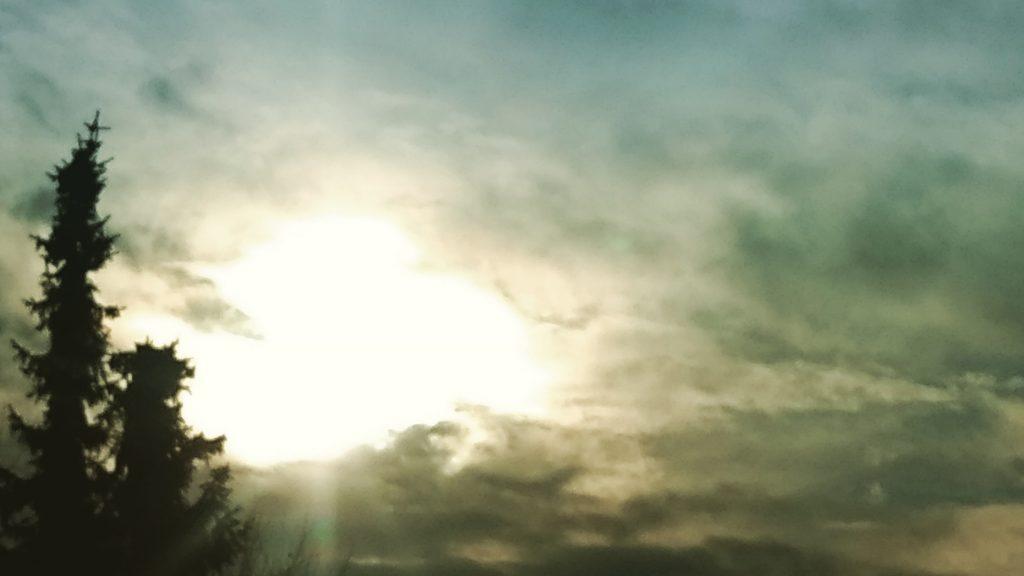 Ein bewölkter Himmel, hinter den Wolken scheint die Sonne golden, links hohe Tannen